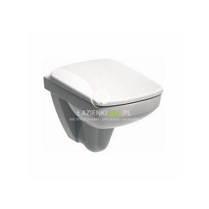 wyposażenie łazienki dla niepełnosprawnych